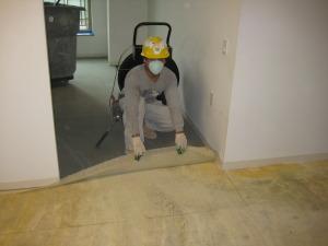 הסרת שטיחים על בעל מקצוע